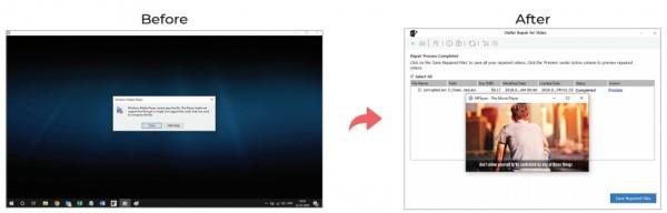stellar repair for video